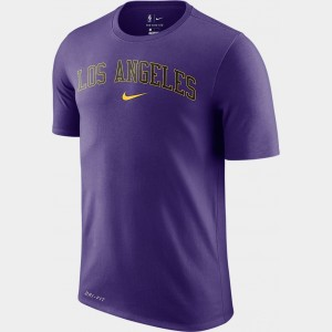 Men's Nike Dri-FIT Los Angeles Lakers NBA City T-Shirt Purple Sales