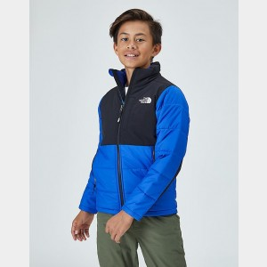 Black Friday 2021 Kids' The North Face Balanced Rock Insulated Jacket Blue/Black Sales