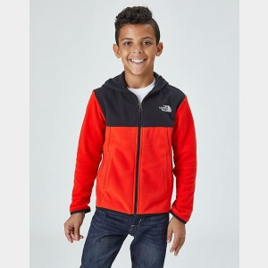 Boys' The North Face Glacier Full-Zip Hoodie Red/Black Sales