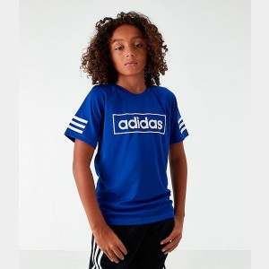 Little Kids' adidas Linear Raglan T-Shirt Royal Blue Sales