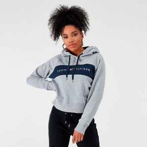 Women's Tommy Hilfiger Crop Hoodie Grey Sales