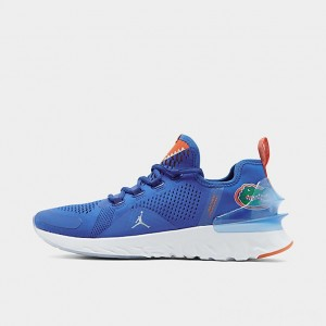 Men's Jordan React Havoc Florida Gators Running Shoes Game Royal/Metallic Silver Sales