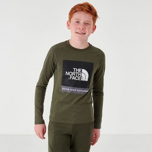 Boys' The North Face Sleeve Hit Long-Sleeve T-Shirt Dark Green Sales