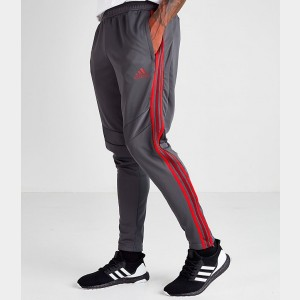 Men's adidas Tiro 19 Training Pants Grey/Red Sales