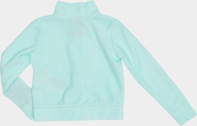 Girls' Toddler Nike Velour Track Set Mint Sales